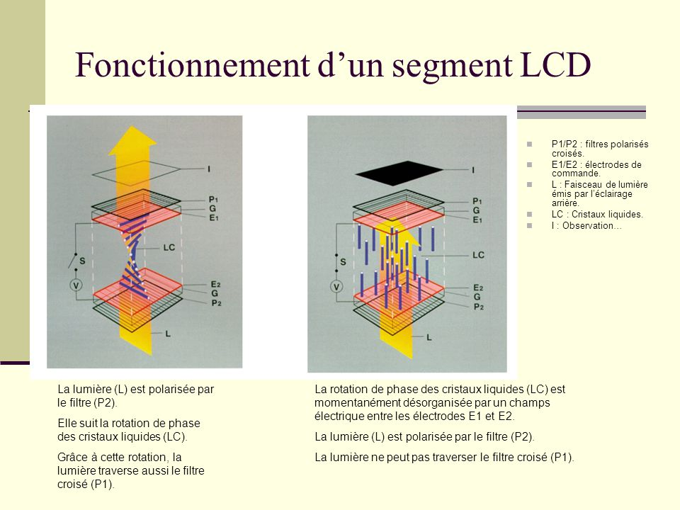 Fonctionnement d'un segment LCD