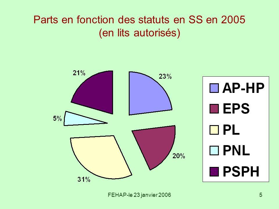 Parts en fonction des statuts en SS en 2005 (en lits autorisés)