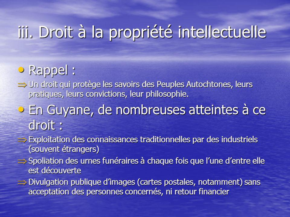 iii. Droit à la propriété intellectuelle