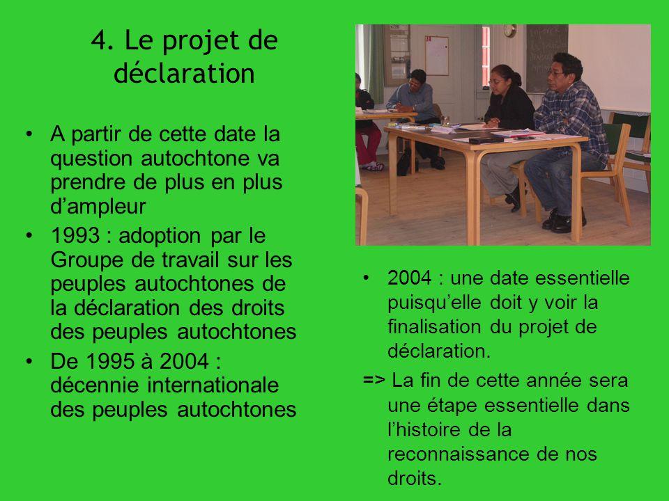 4. Le projet de déclaration