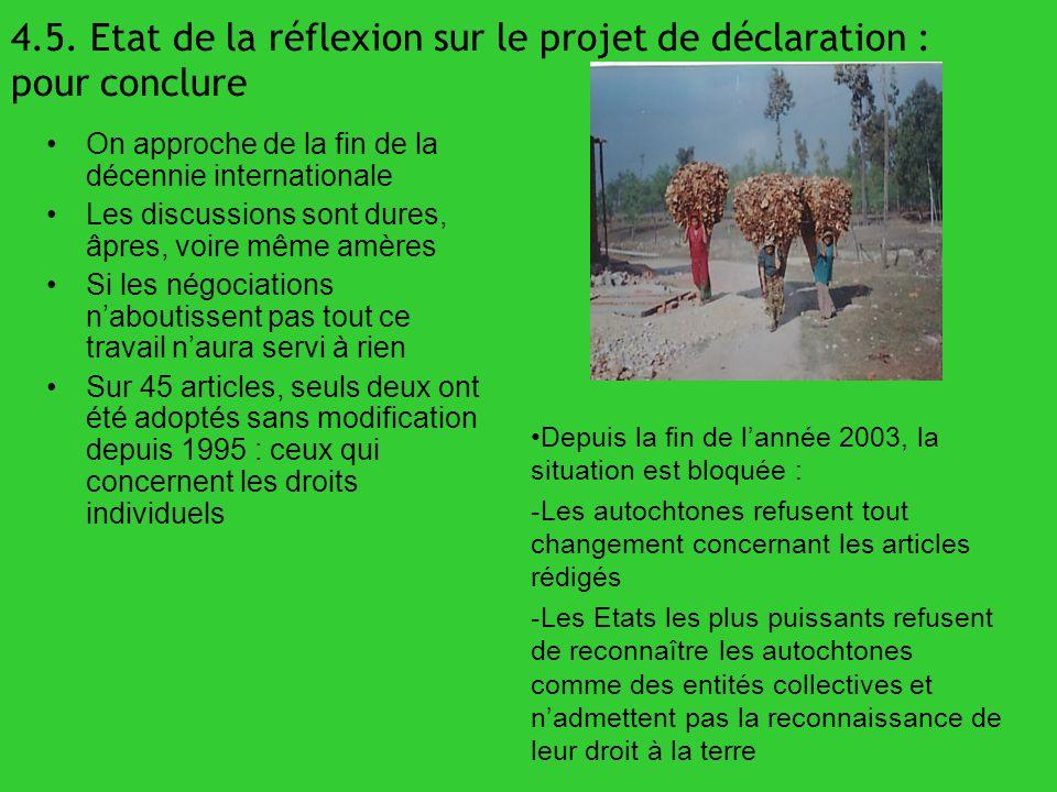 4.5. Etat de la réflexion sur le projet de déclaration : pour conclure