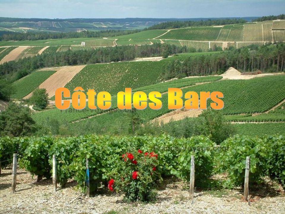 Côte des Bars
