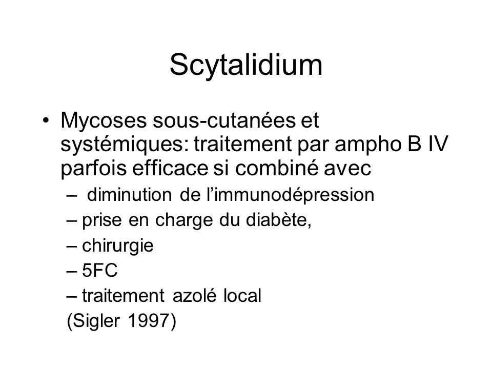 Scytalidium Mycoses sous-cutanées et systémiques: traitement par ampho B IV parfois efficace si combiné avec.