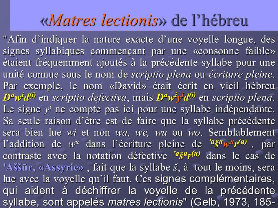 «Matres lectionis» de l'hébreu
