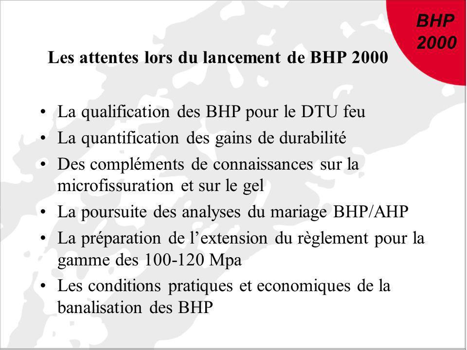 Les attentes lors du lancement de BHP 2000