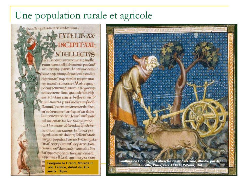 Une population rurale et agricole
