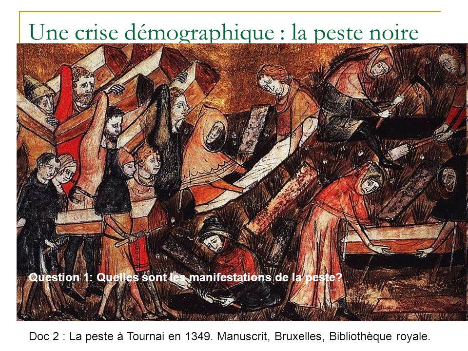Une crise démographique : la peste noire