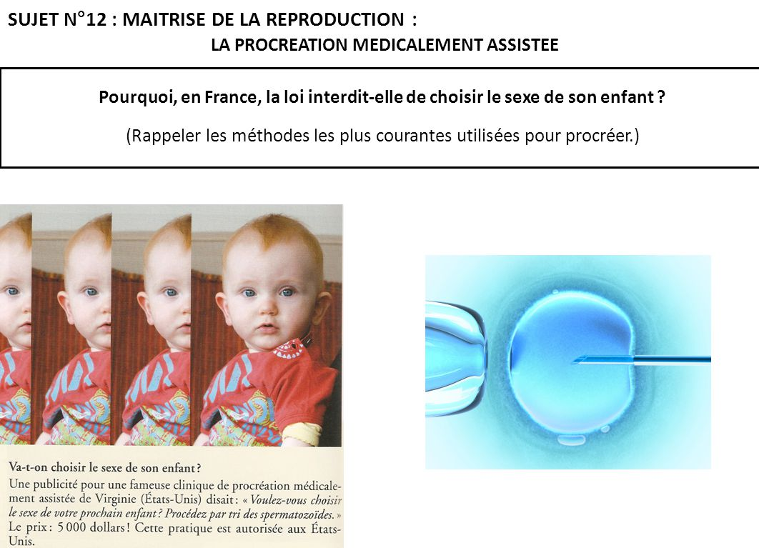 LA PROCREATION MEDICALEMENT ASSISTEE