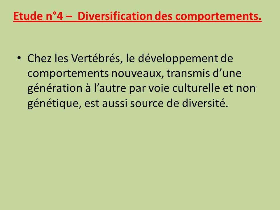 Etude n°4 – Diversification des comportements.