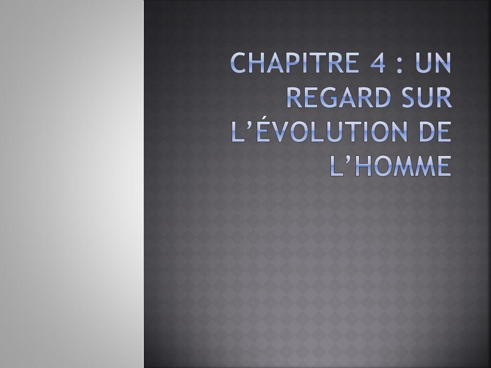 Chapitre 4 : Un regard sur l'évolution de l'Homme