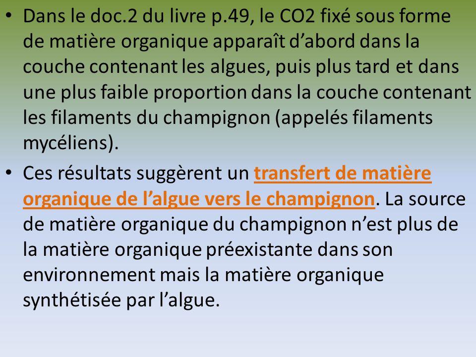 Dans le doc.2 du livre p.49, le CO2 fixé sous forme de matière organique apparaît d'abord dans la couche contenant les algues, puis plus tard et dans une plus faible proportion dans la couche contenant les filaments du champignon (appelés filaments mycéliens).