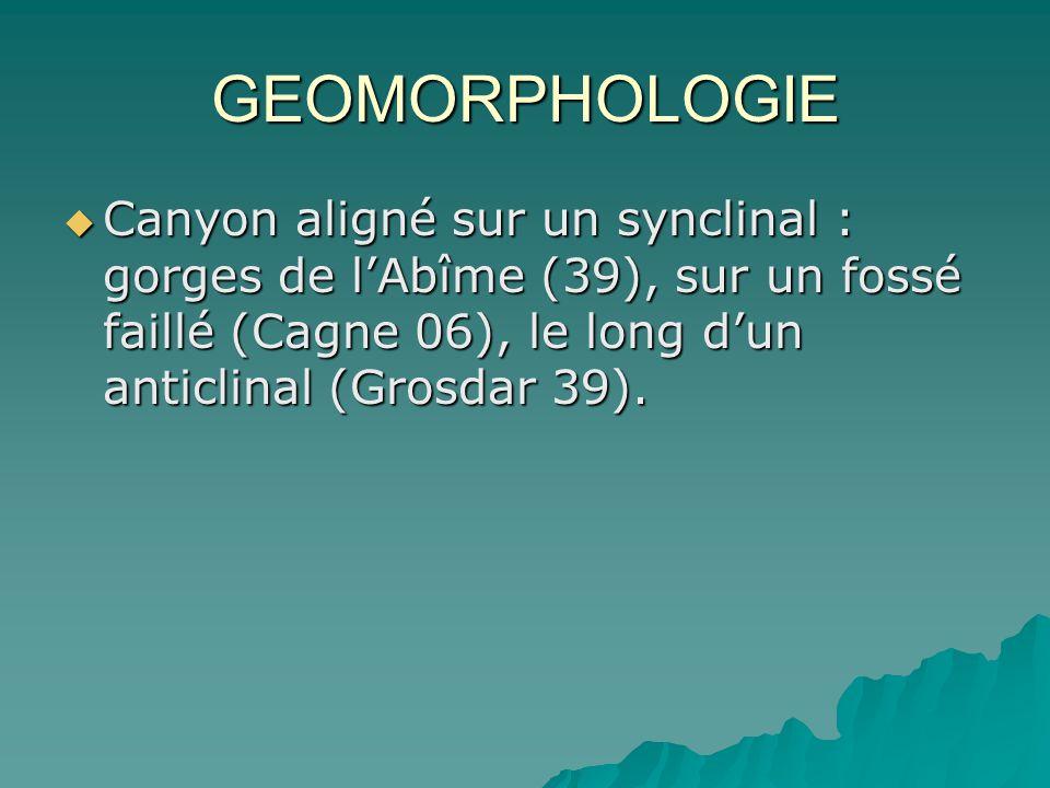 GEOMORPHOLOGIE Canyon aligné sur un synclinal : gorges de l'Abîme (39), sur un fossé faillé (Cagne 06), le long d'un anticlinal (Grosdar 39).