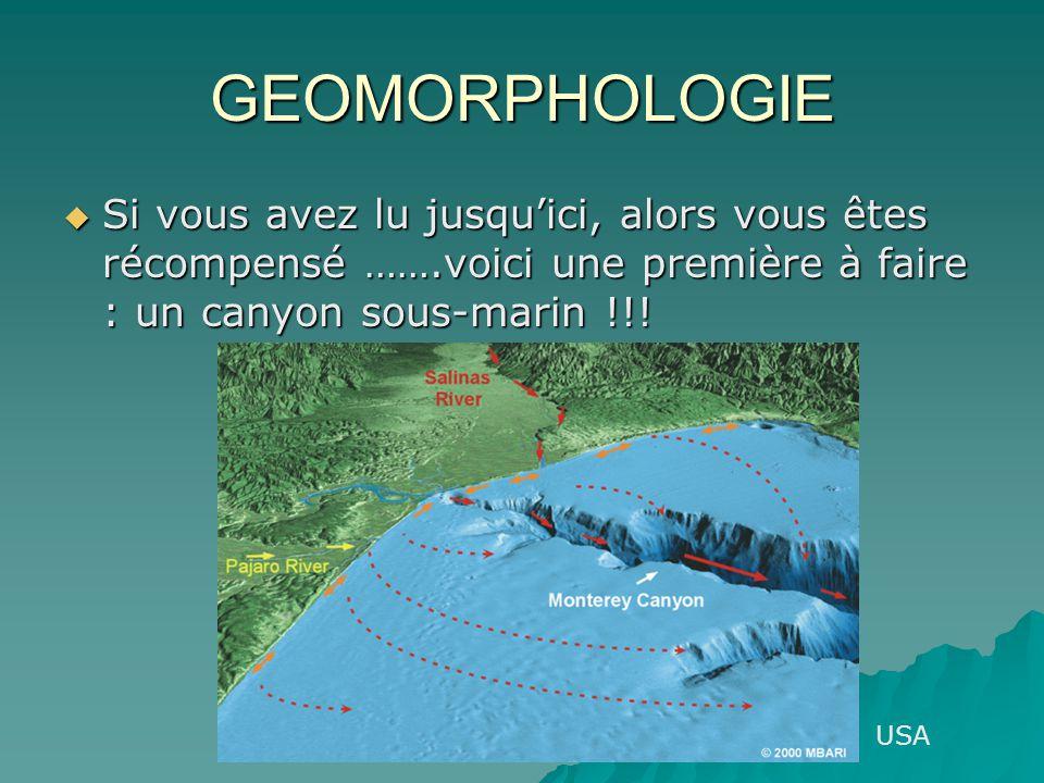 GEOMORPHOLOGIE Si vous avez lu jusqu'ici, alors vous êtes récompensé …….voici une première à faire : un canyon sous-marin !!!