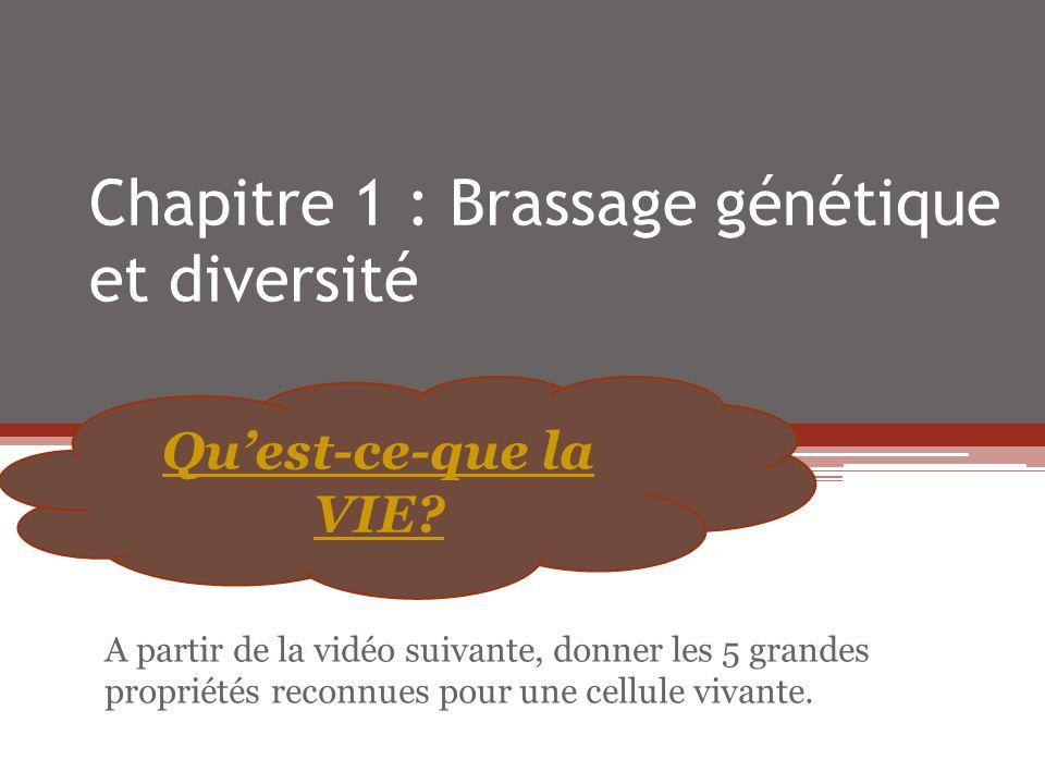 Chapitre 1 : Brassage génétique et diversité