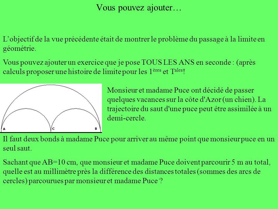Vous pouvez ajouter… L'objectif de la vue précédente était de montrer le problème du passage à la limite en géométrie.