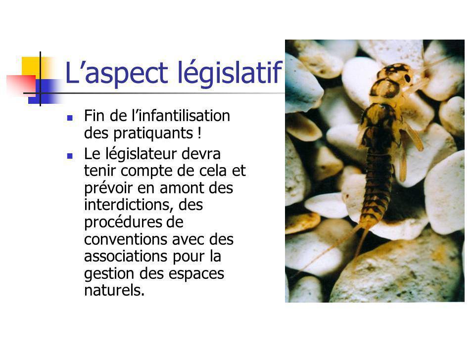 L'aspect législatif Fin de l'infantilisation des pratiquants !