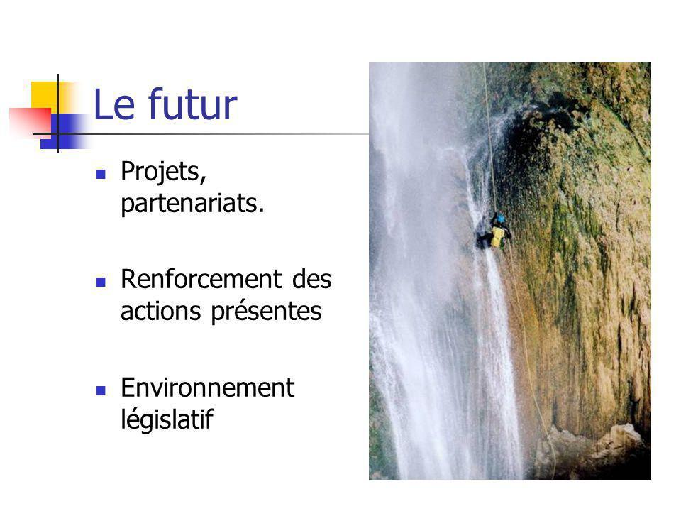 Le futur Projets, partenariats. Renforcement des actions présentes