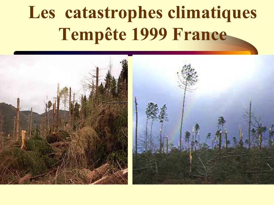 Les catastrophes climatiques Tempête 1999 France