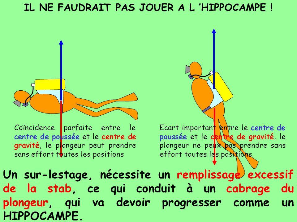 IL NE FAUDRAIT PAS JOUER A L 'HIPPOCAMPE !
