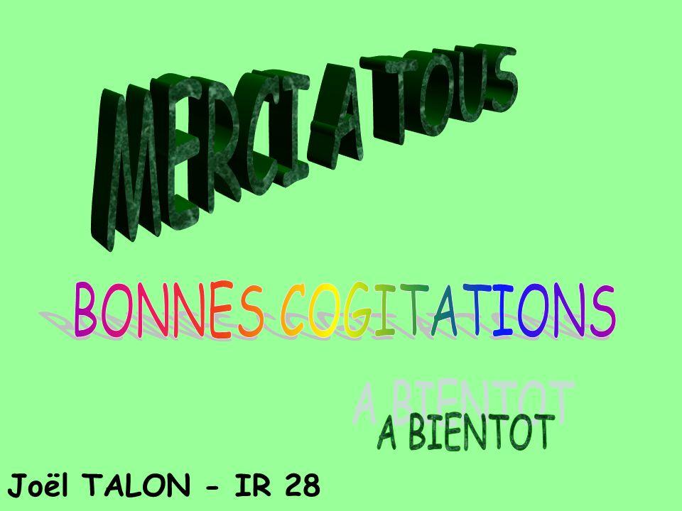MERCI A TOUS BONNES COGITATIONS A BIENTOT Joël TALON - IR 28