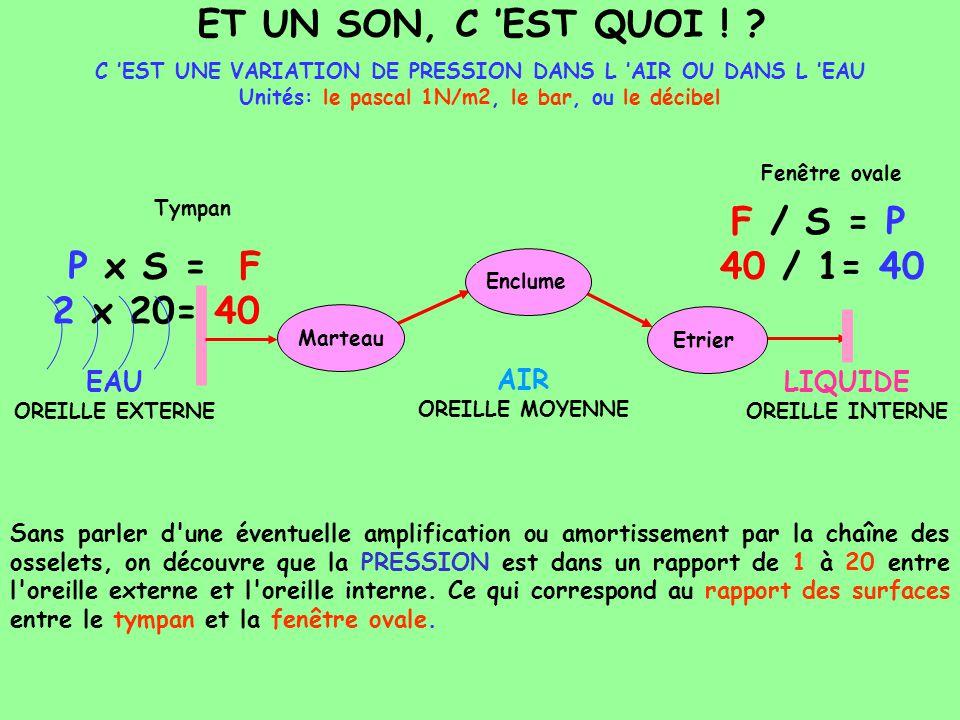ET UN SON, C 'EST QUOI ! F / S = P 40 / 1= 40 P x S = F 2 x 20= 40