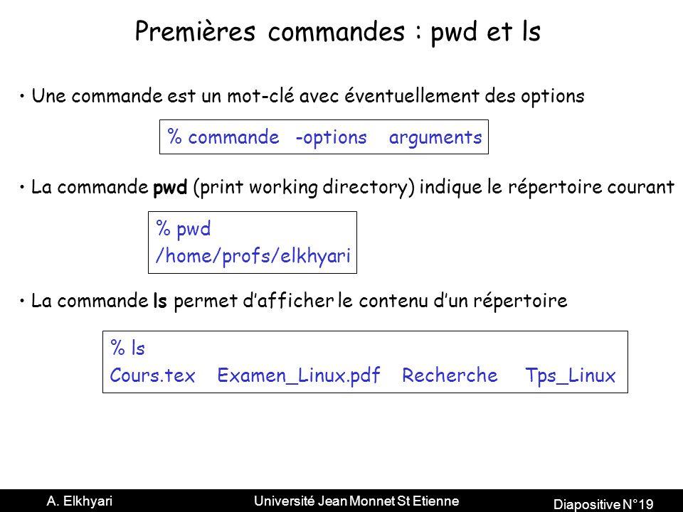 Premières commandes : pwd et ls