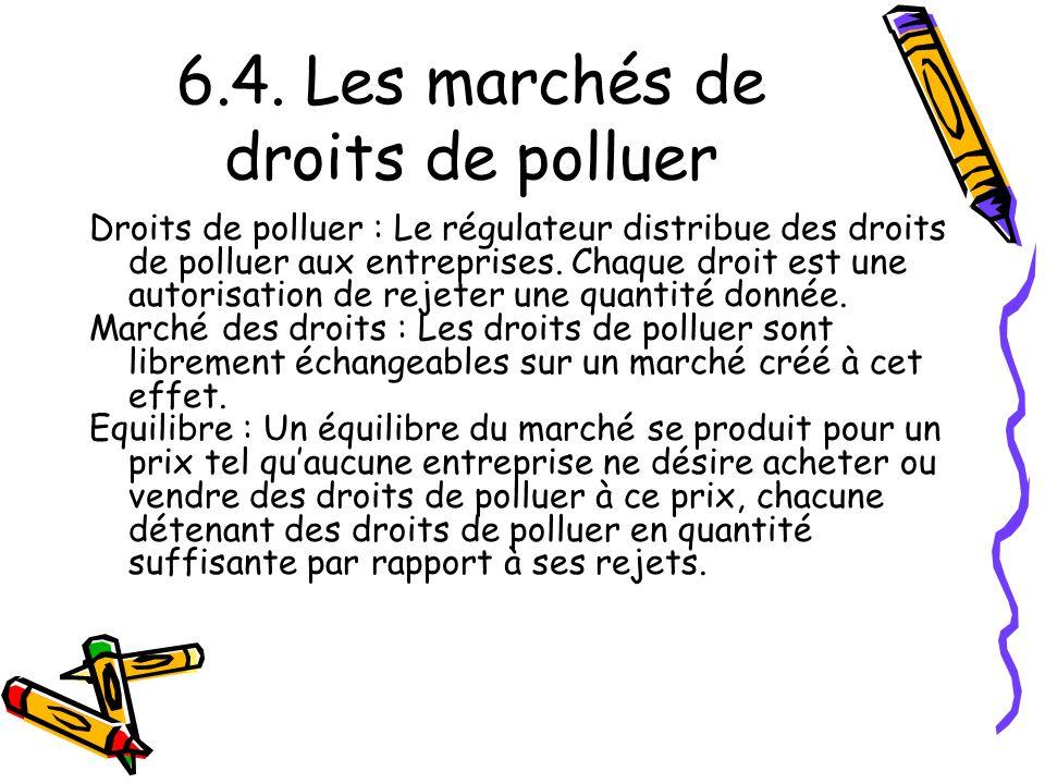 6.4. Les marchés de droits de polluer