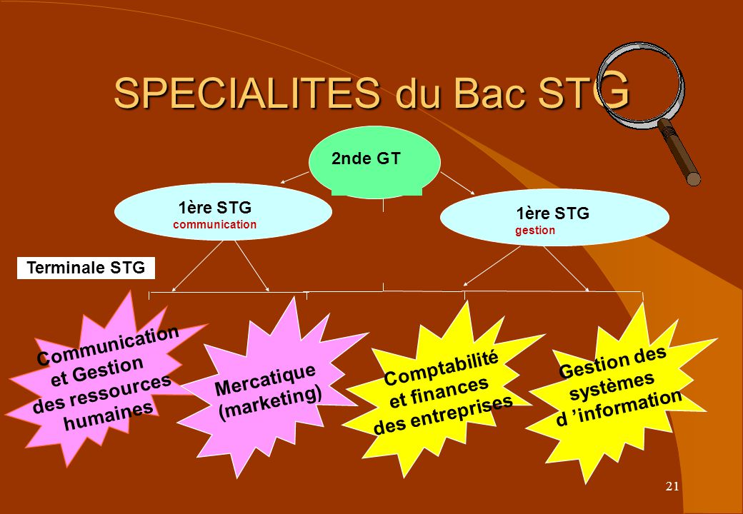SPECIALITES du Bac STG Communication et Gestion Gestion des