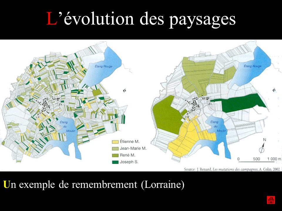 L'évolution des paysages