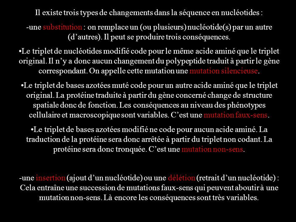 Il existe trois types de changements dans la séquence en nucléotides :