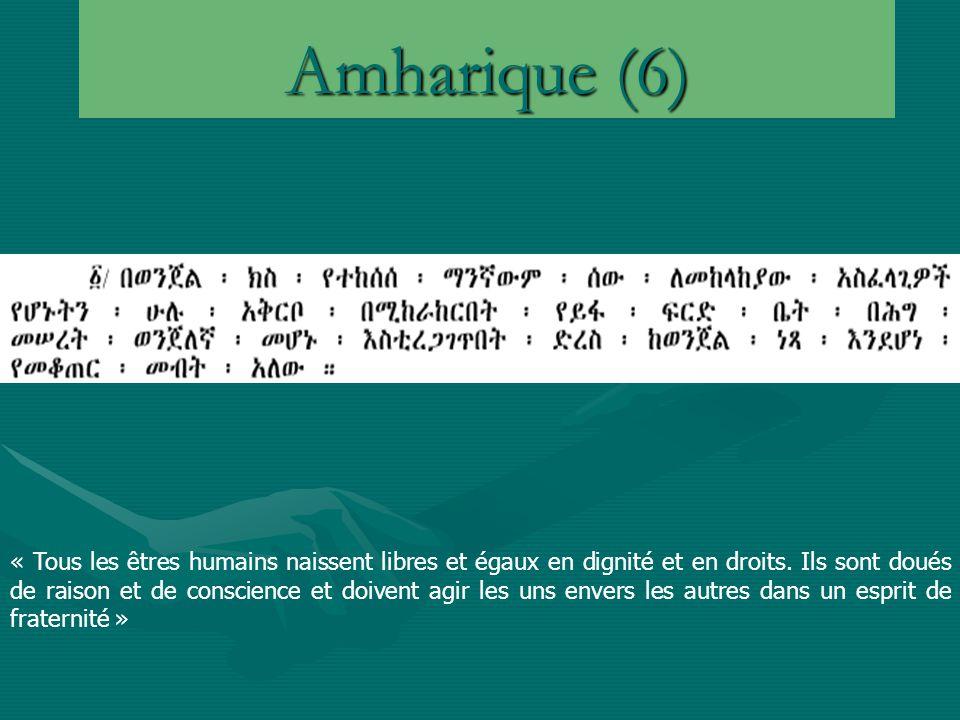 Amharique (6)