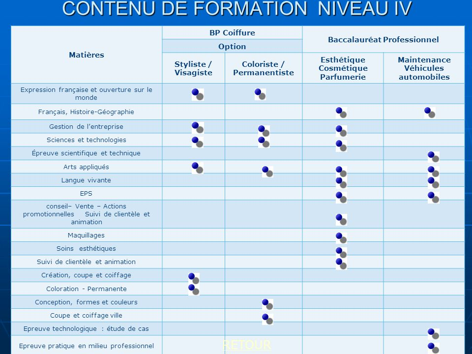 CONTENU DE FORMATION NIVEAU IV