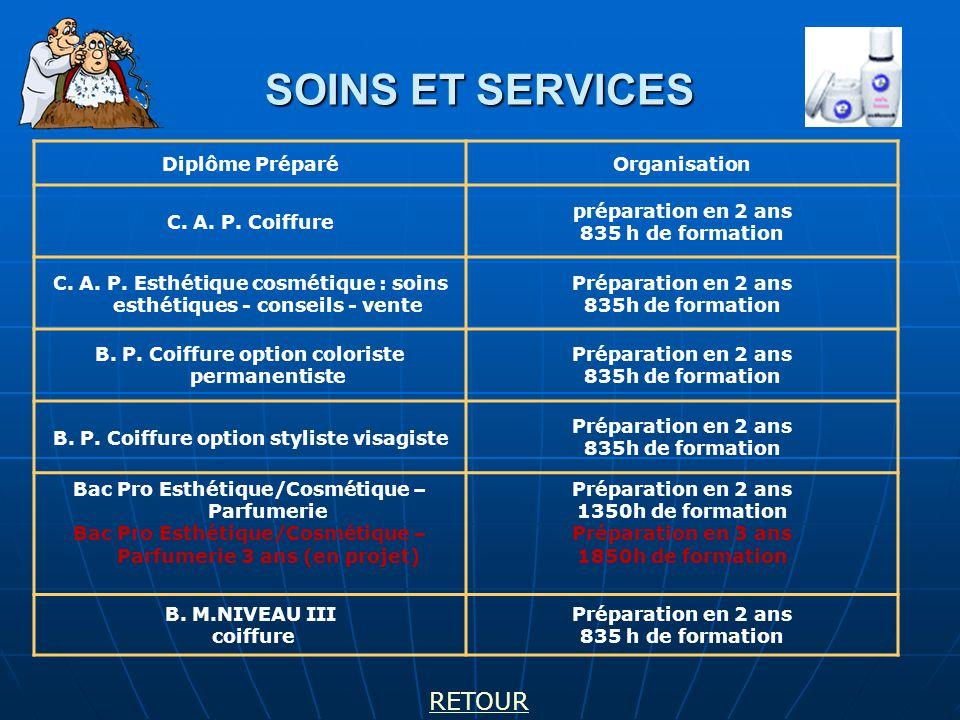SOINS ET SERVICES RETOUR Diplôme Préparé Organisation