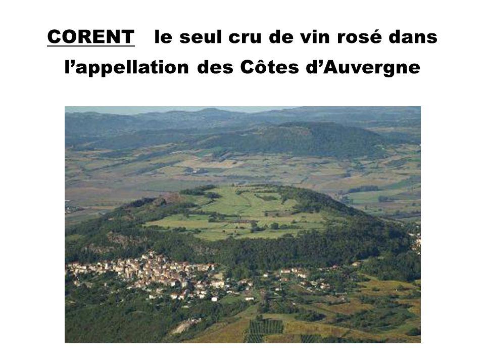 CORENT le seul cru de vin rosé dans l'appellation des Côtes d'Auvergne