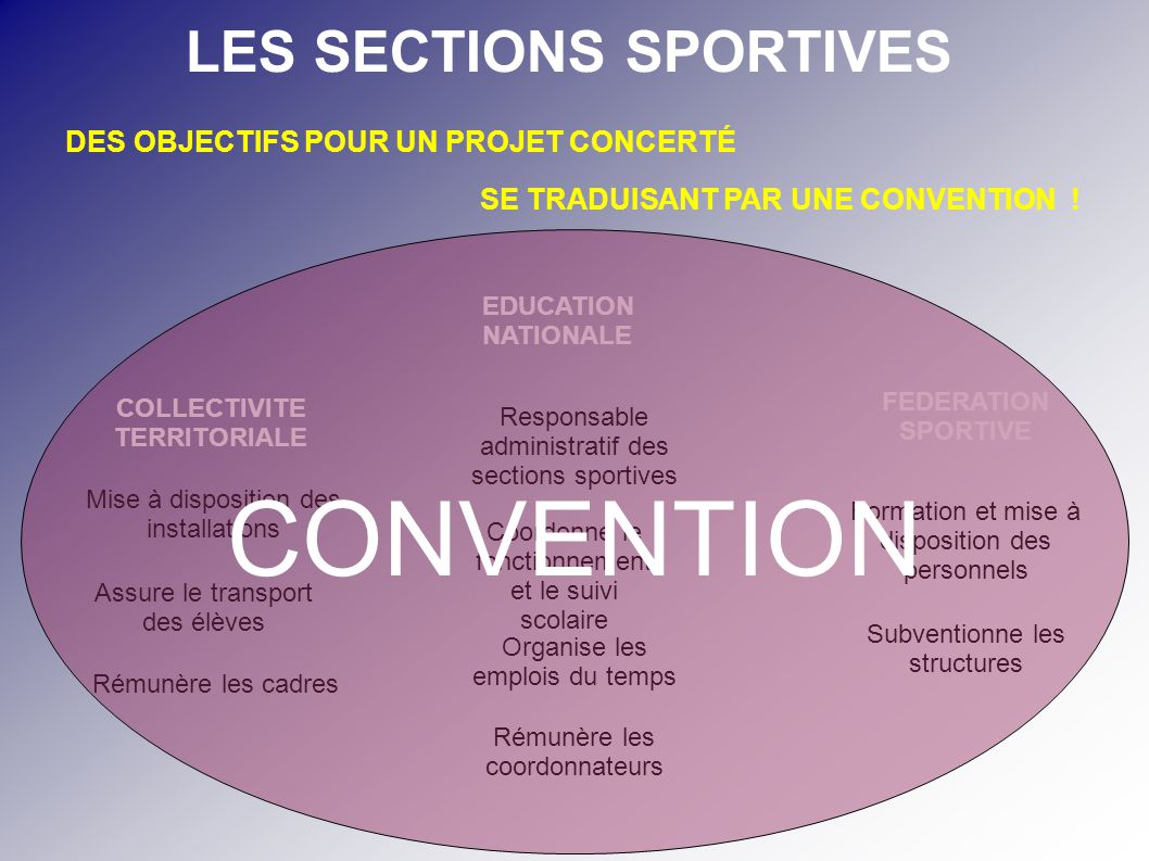 LES SECTIONS SPORTIVES COLLECTIVITE TERRITORIALE