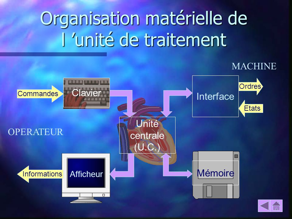 Organisation matérielle de l 'unité de traitement