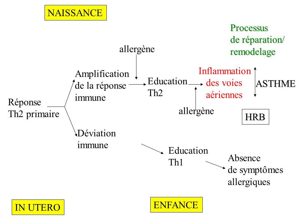 NAISSANCE Processus. de réparation/ remodelage. allergène. Inflammation. des voies. aériennes.