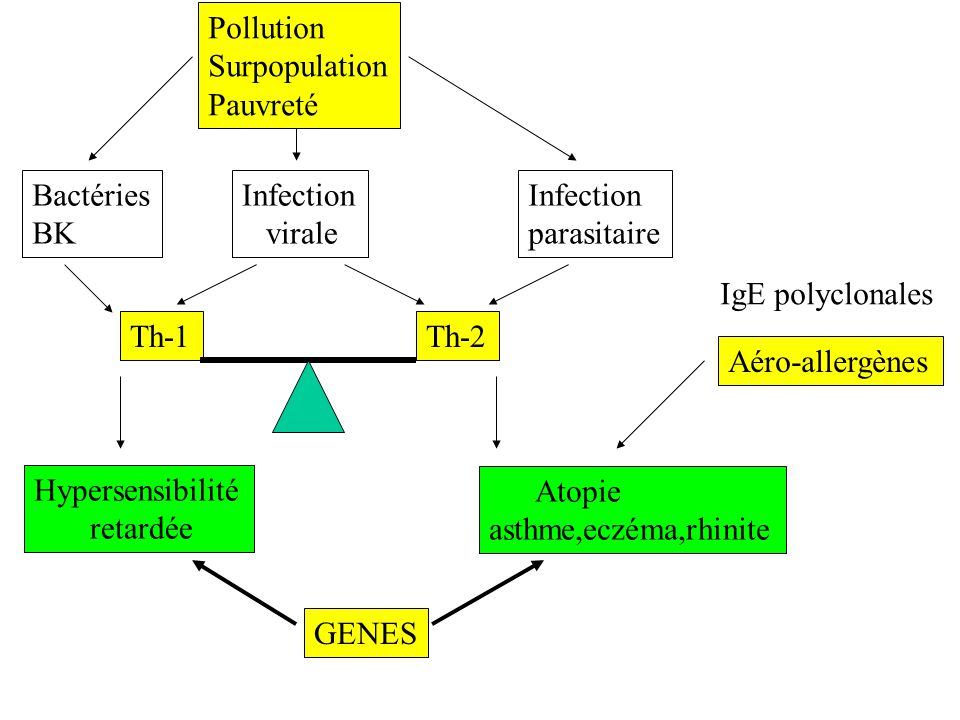 Pollution Surpopulation. Pauvreté. Bactéries. BK. Infection. virale. Infection. parasitaire.