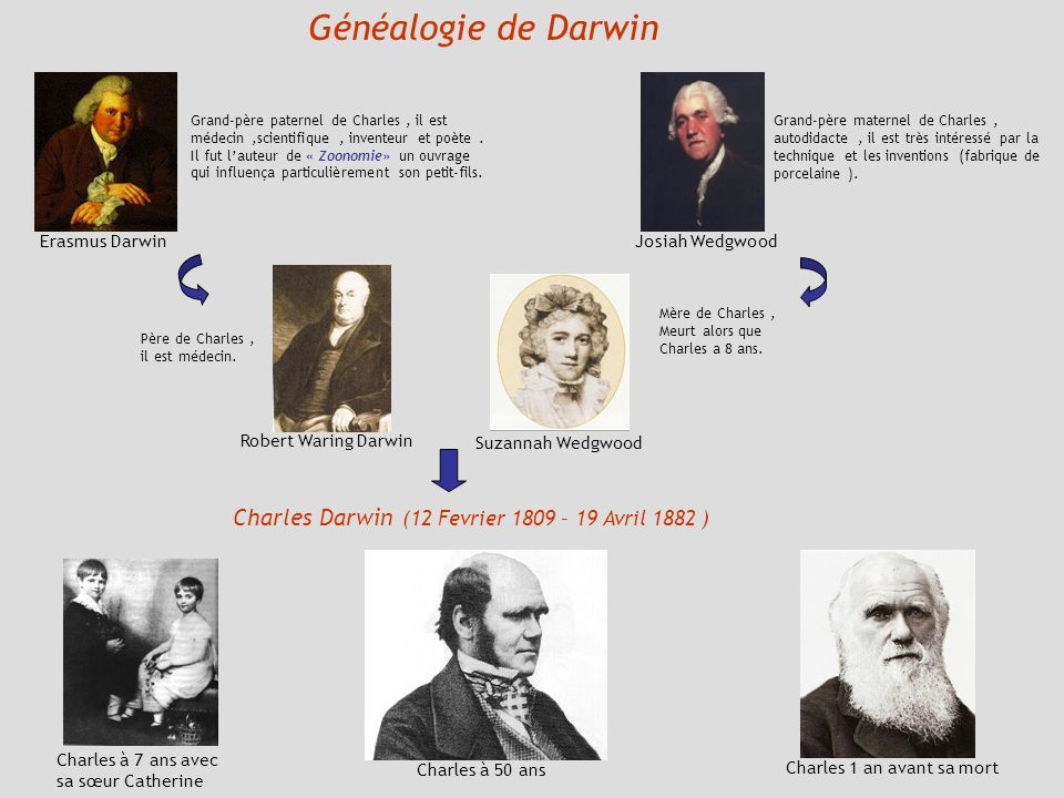 Généalogie de Darwin Charles Darwin (12 Fevrier 1809 – 19 Avril 1882 )