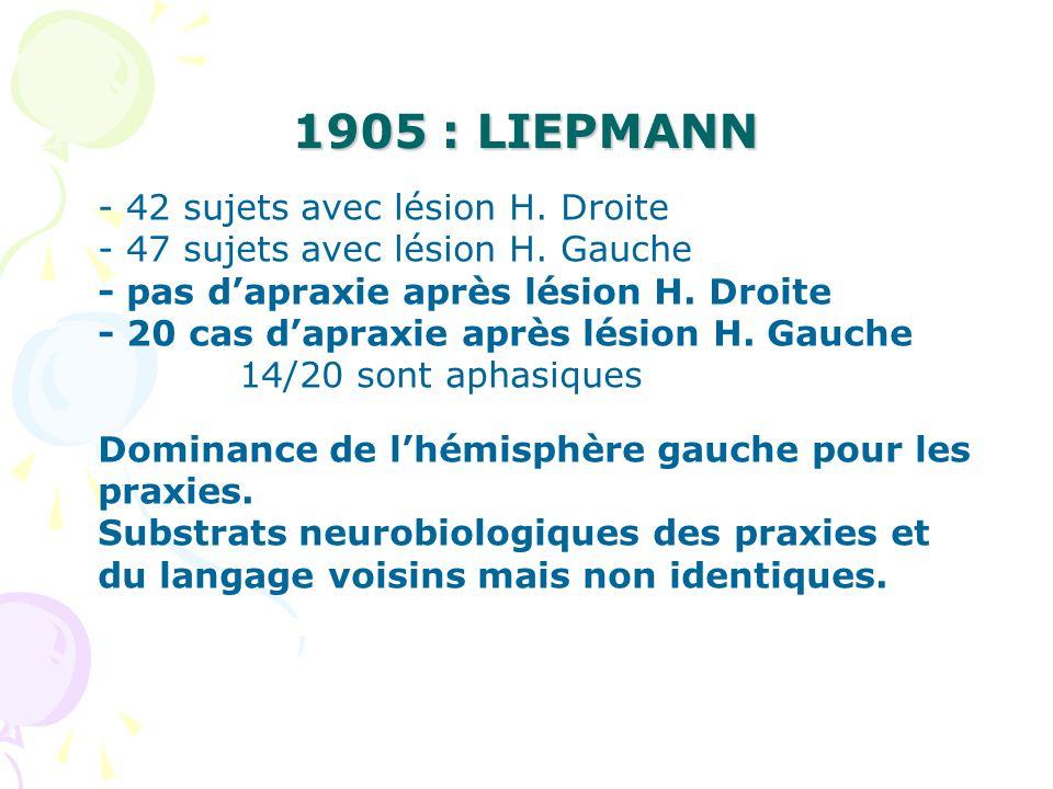 1905 : LIEPMANN - 42 sujets avec lésion H. Droite