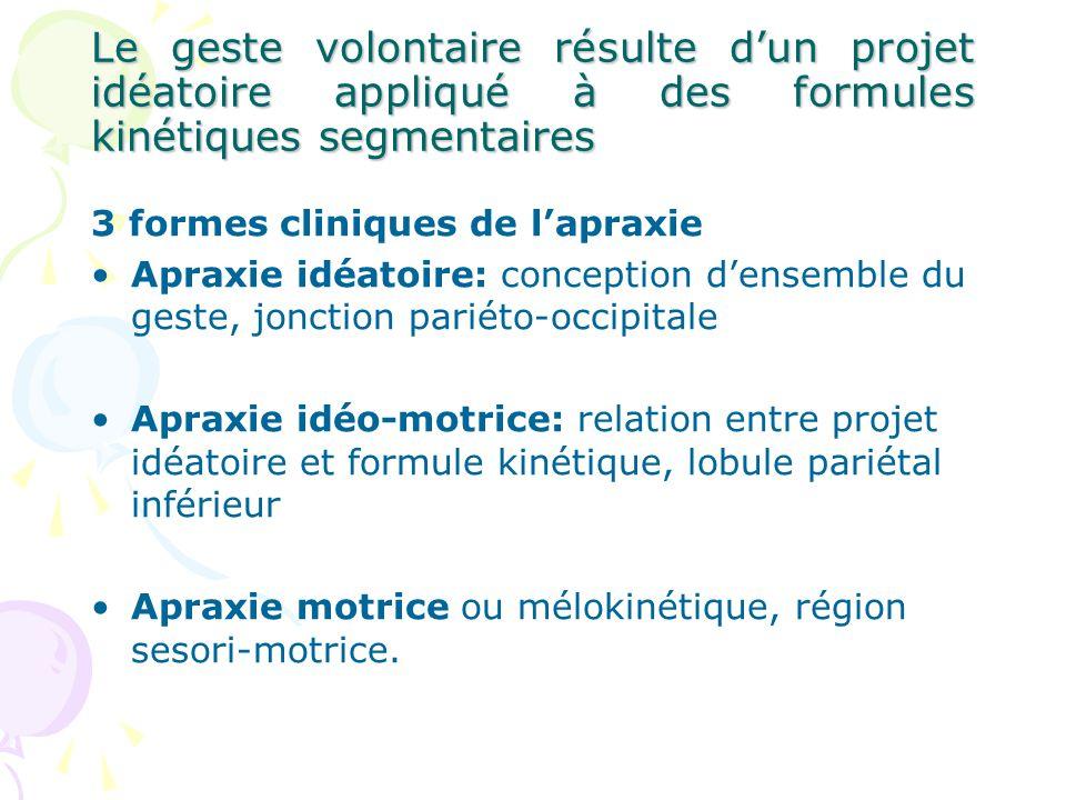 Le geste volontaire résulte d'un projet idéatoire appliqué à des formules kinétiques segmentaires
