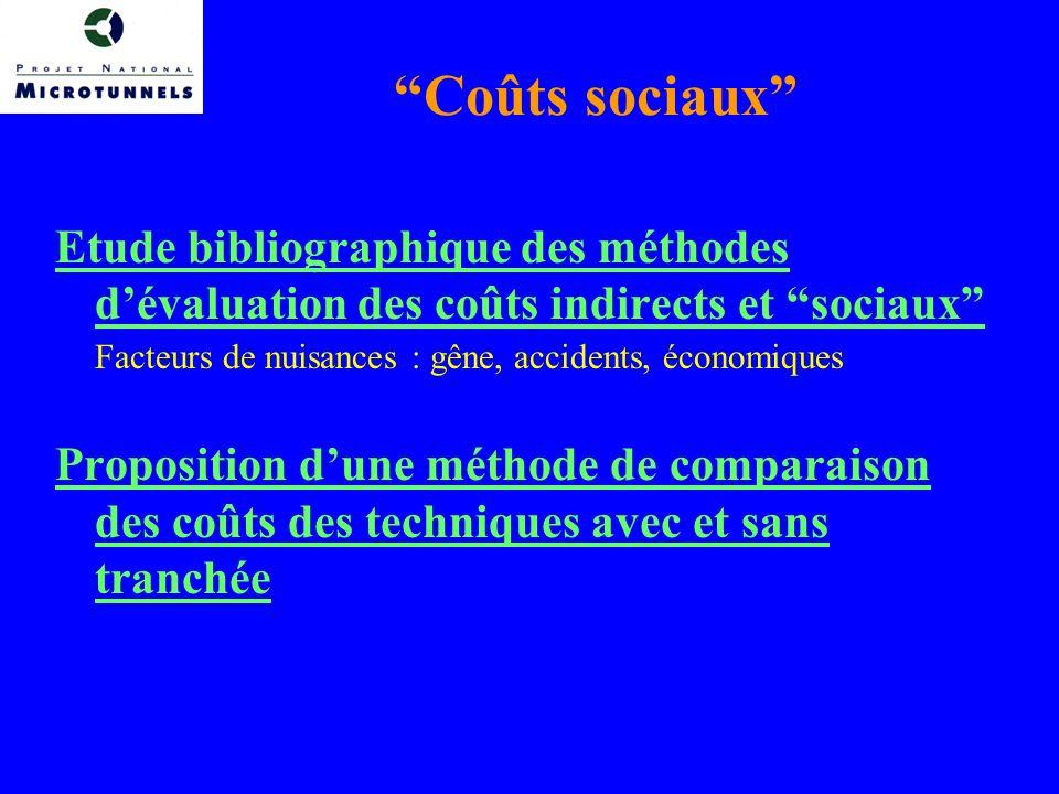 Coûts sociaux Etude bibliographique des méthodes d'évaluation des coûts indirects et sociaux