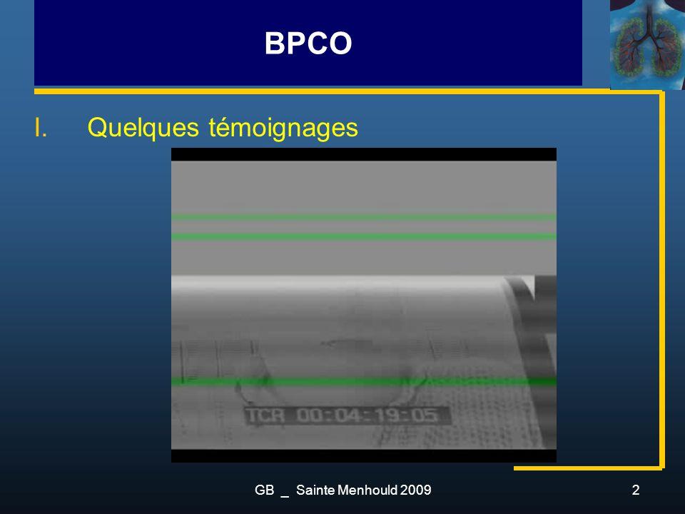 BPCO Quelques témoignages GB _ Sainte Menhould 2009