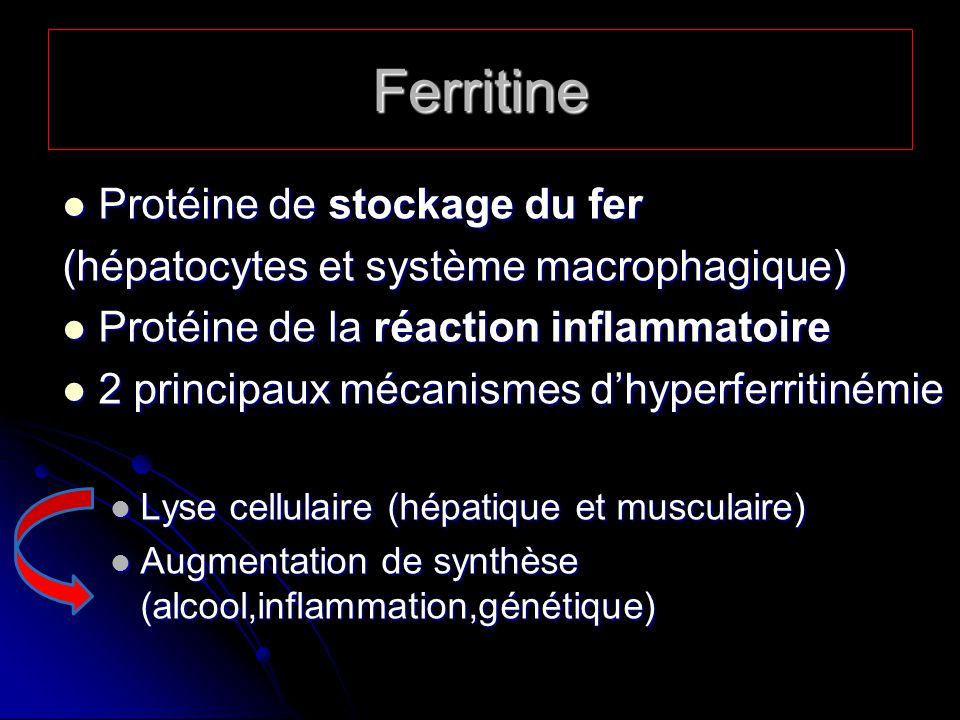 Ferritine Protéine de stockage du fer
