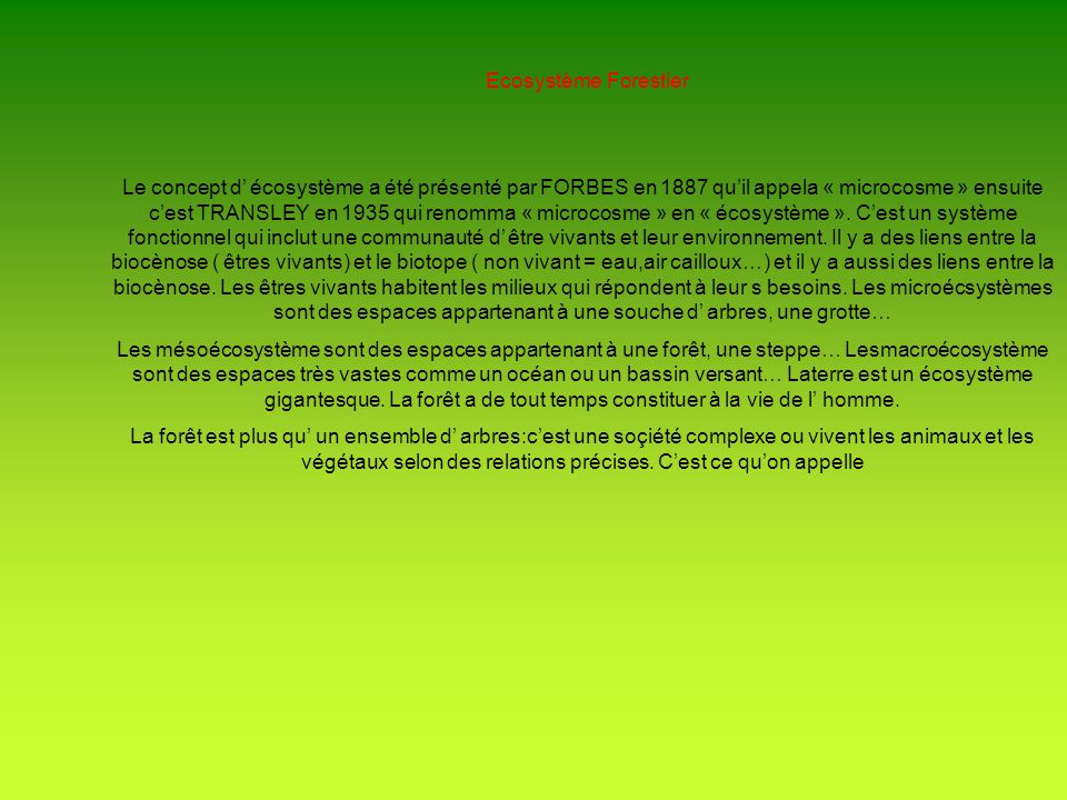 Ecosystème Forestier