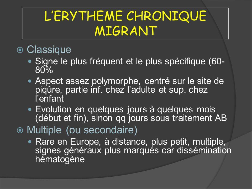 L'ERYTHEME CHRONIQUE MIGRANT