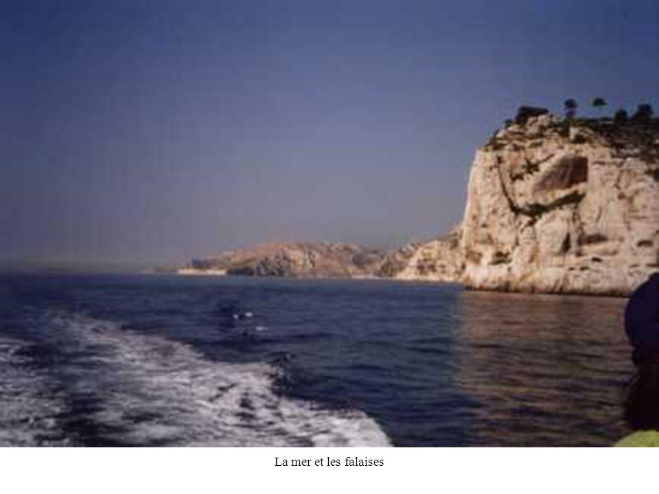 JPG50 La mer et les falaises