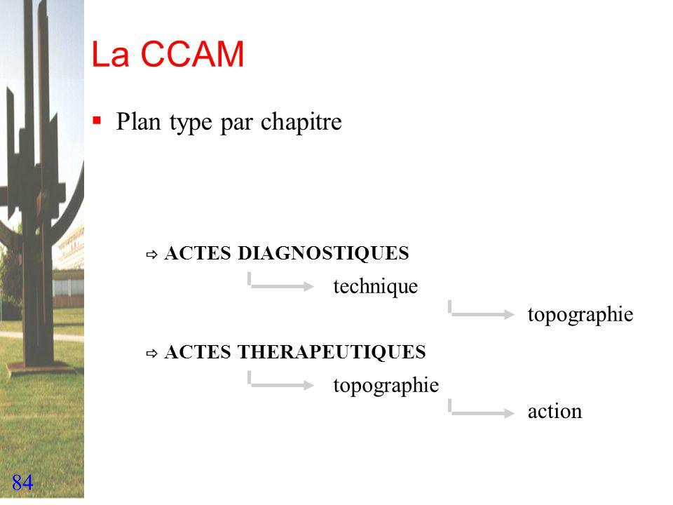 La CCAM Plan type par chapitre  ACTES DIAGNOSTIQUES technique