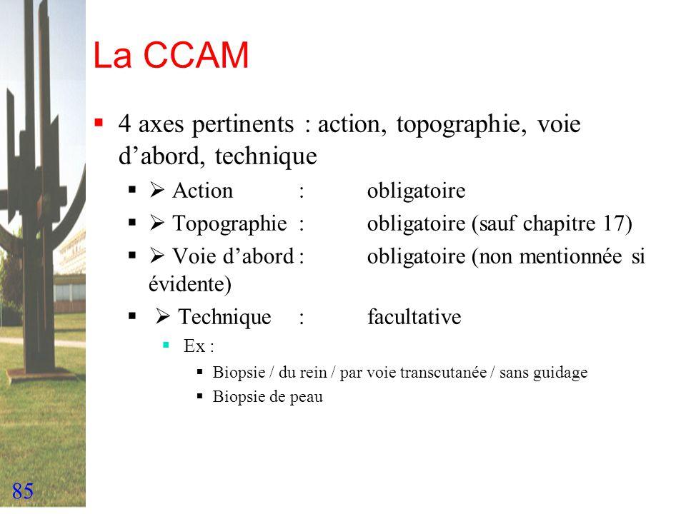 La CCAM 4 axes pertinents : action, topographie, voie d'abord, technique.  Action : obligatoire.