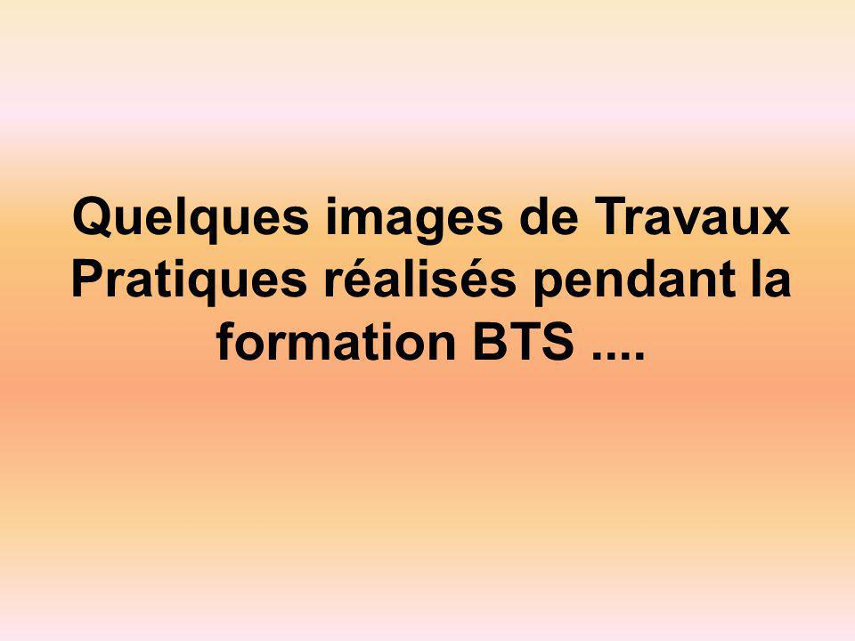 Quelques images de Travaux Pratiques réalisés pendant la formation BTS ....